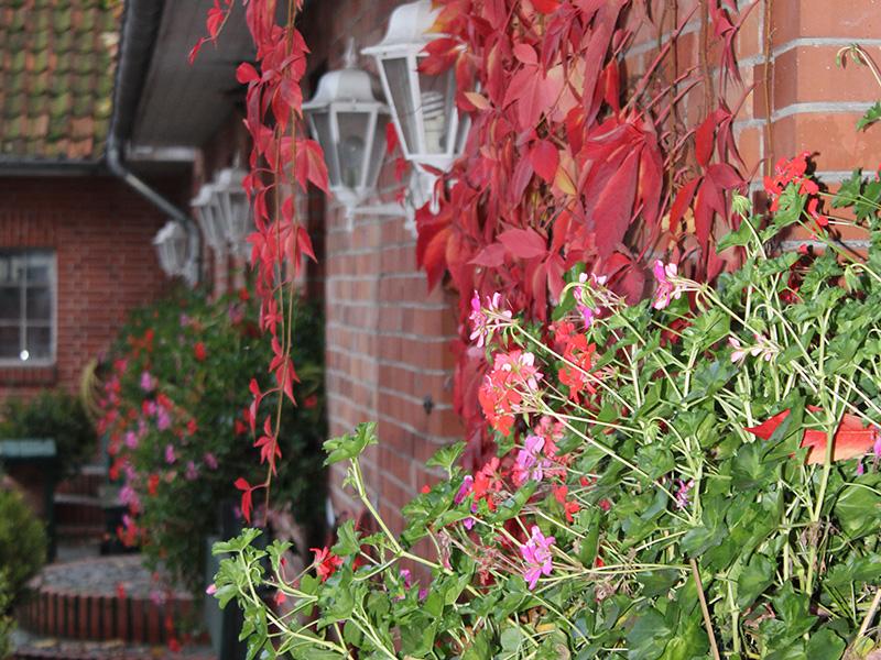 Eingang Wohnungen im Herbst